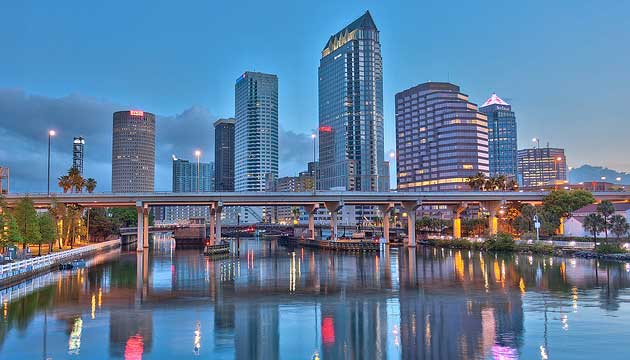 local Tampa SEO
